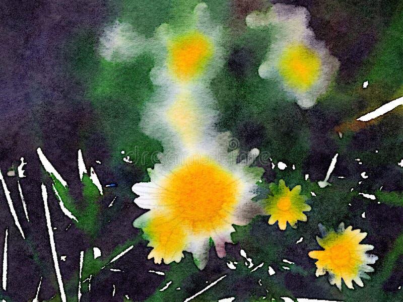 雏菊的水彩 免版税库存图片