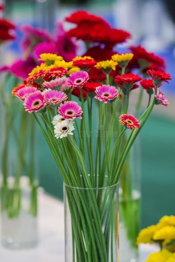 雏菊花在蓝色背景的大丁草花束 桃红色美丽的花束,桔子,紫色花 选择聚焦 库存图片