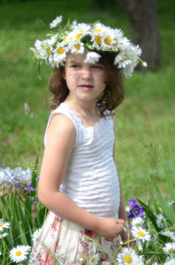 雏菊花圈的女孩  库存照片