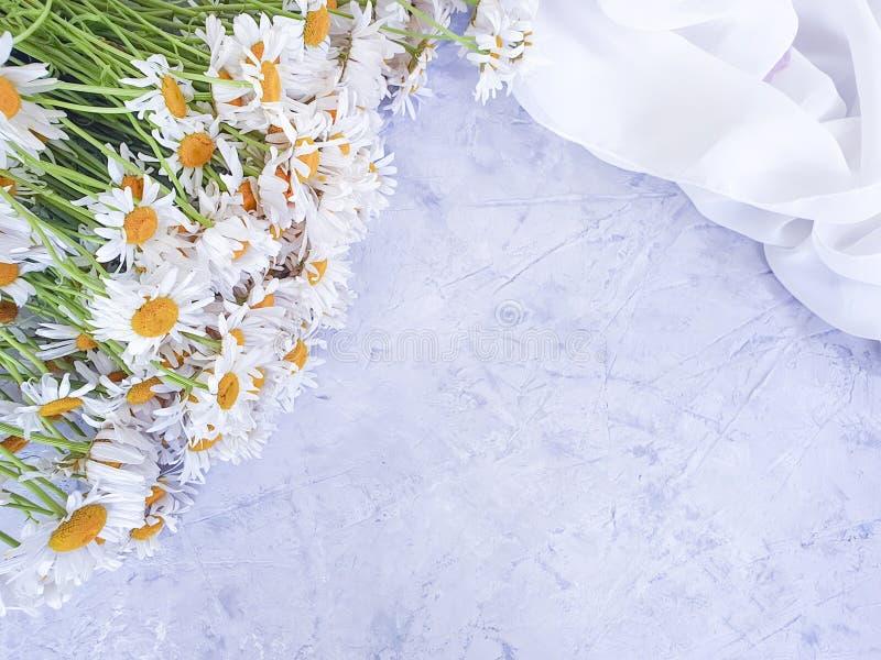 雏菊花花束装饰招呼的构成秀丽灰色具体背景夏天框架 免版税图库摄影