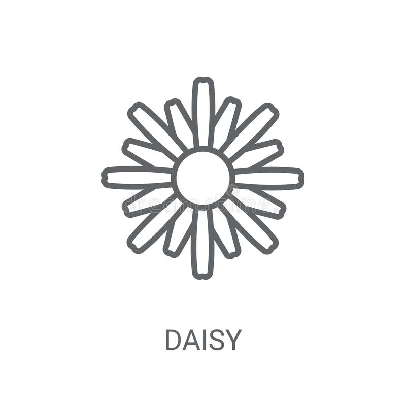 雏菊象 在白色背景的时髦雏菊商标概念从N 皇族释放例证