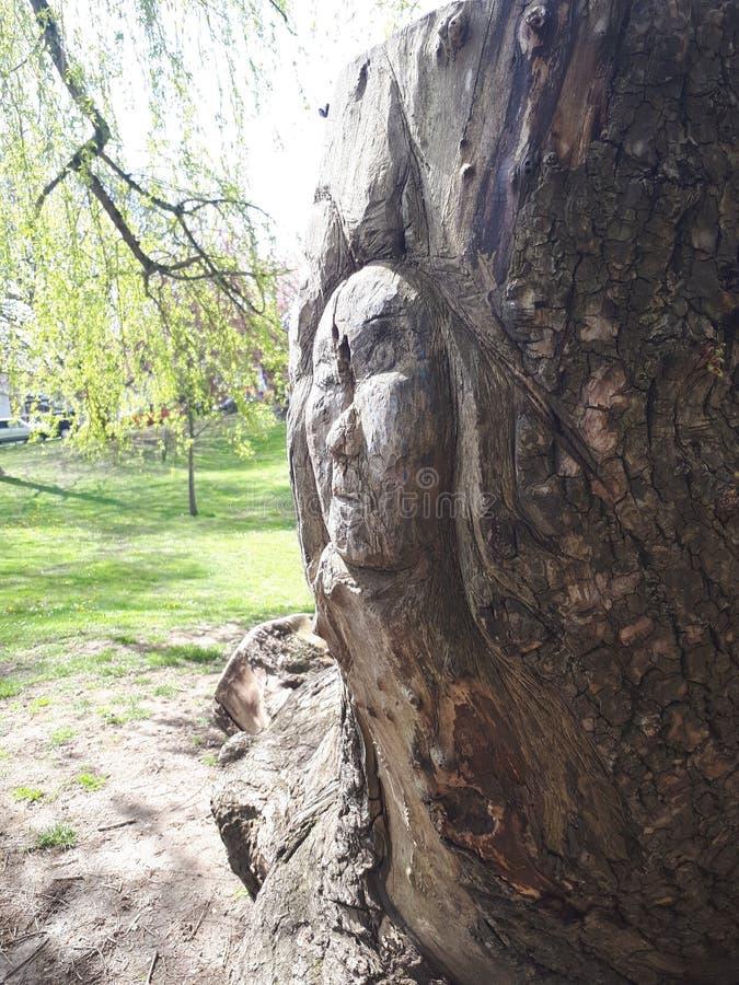 雕刻在公园 免版税库存图片