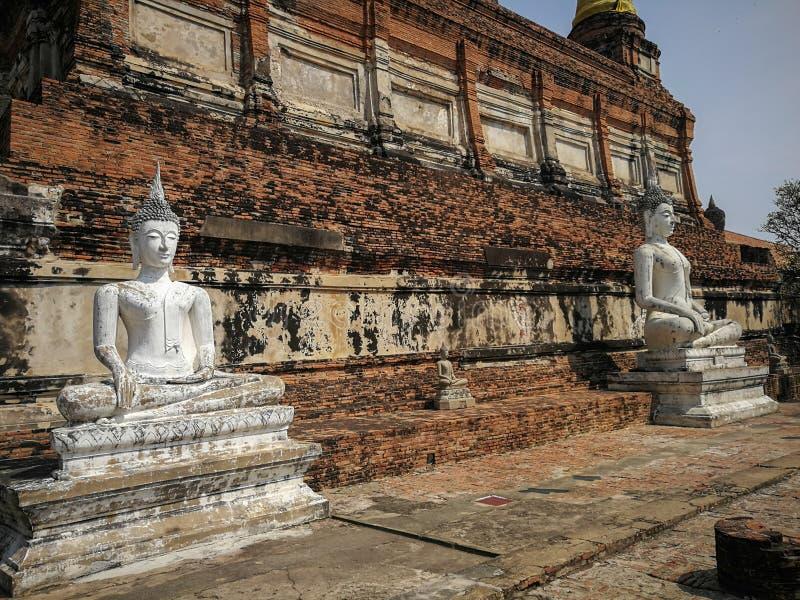 雕象老菩萨和Wat的亚伊Chaimongkol古老塔, 免版税库存图片
