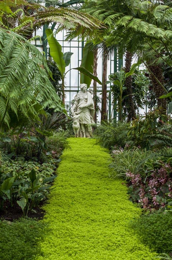 雕象自一间热带庭院温室 免版税库存照片