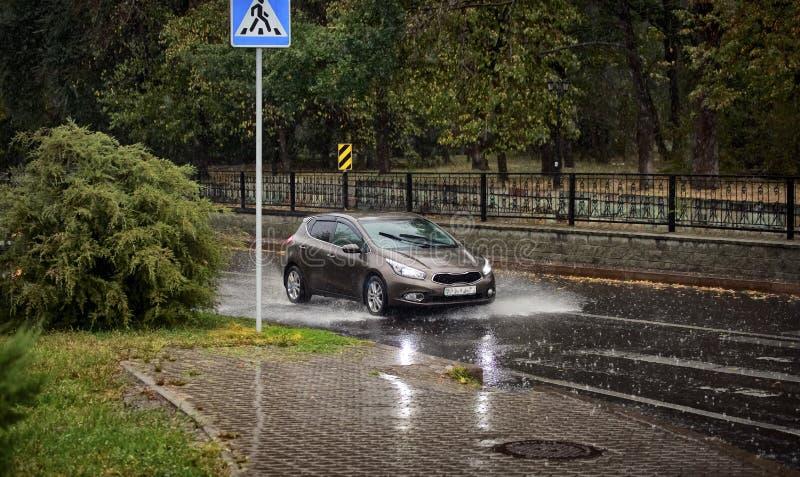 雨在秋天的城市 免版税库存图片