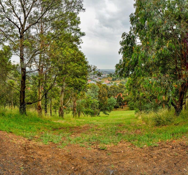 雨天在公园威尔逊 澳洲 免版税库存照片