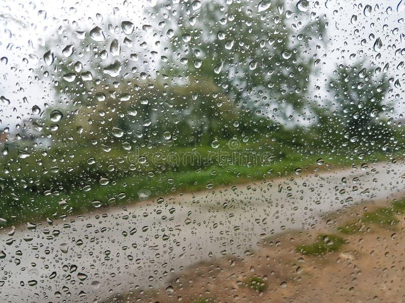 雨投下水叶子玻璃路 免版税图库摄影