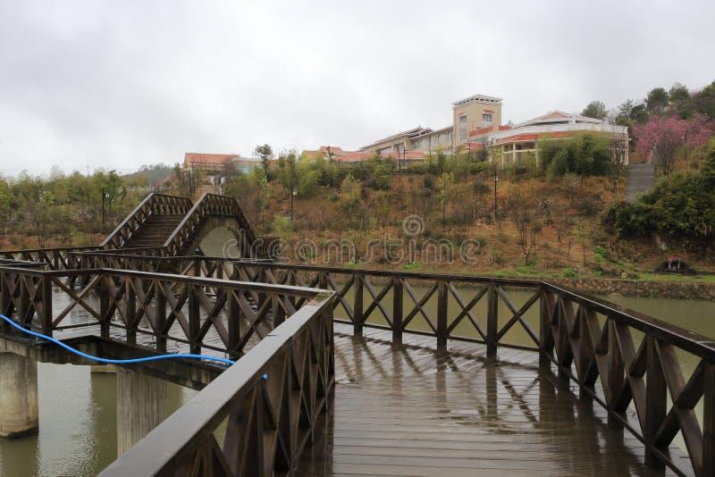 雨木桥 库存照片