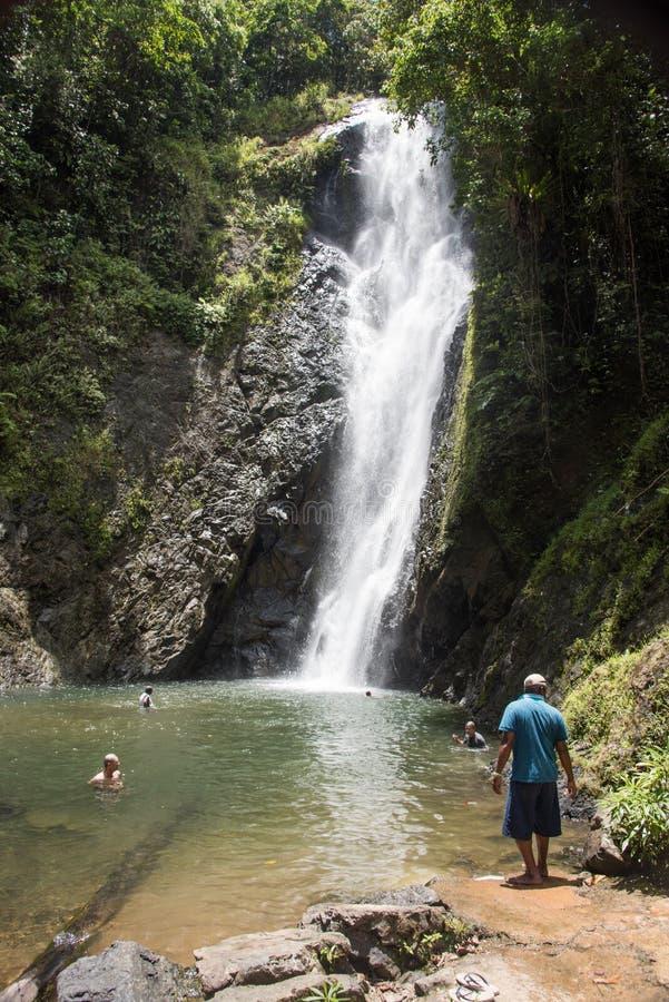 雨林瀑布和岩石水池游泳 免版税库存图片