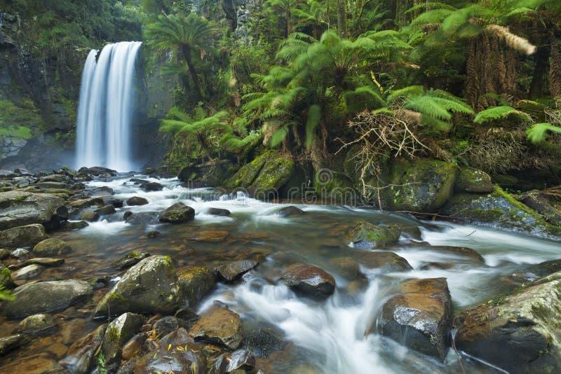 雨林瀑布, Hopetoun落,伟大的Otway NP,维多利亚, 库存图片
