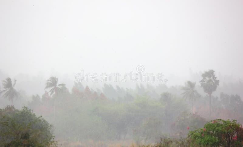 雨风暴有灰色天空背景 雨风暴通过农田吹 免版税库存照片