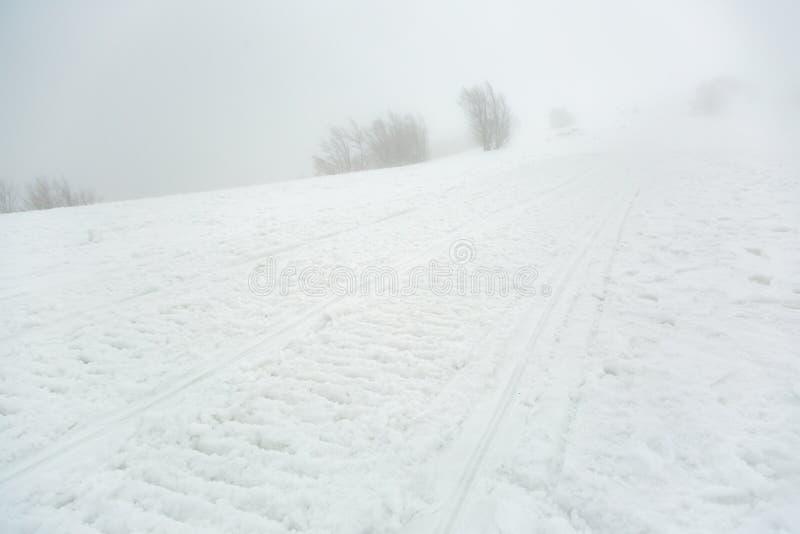 雪上电车的踪影 图库摄影