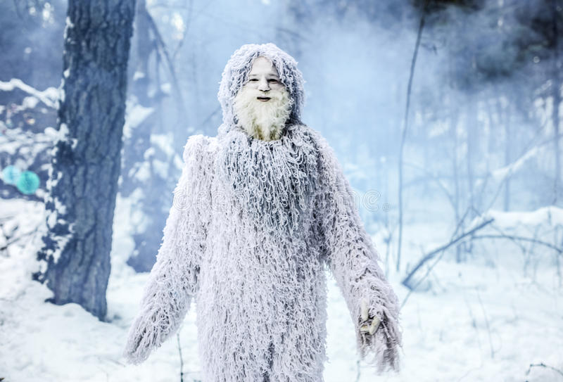 雪人在冬天森林室外幻想照片的童话字符 图库摄影