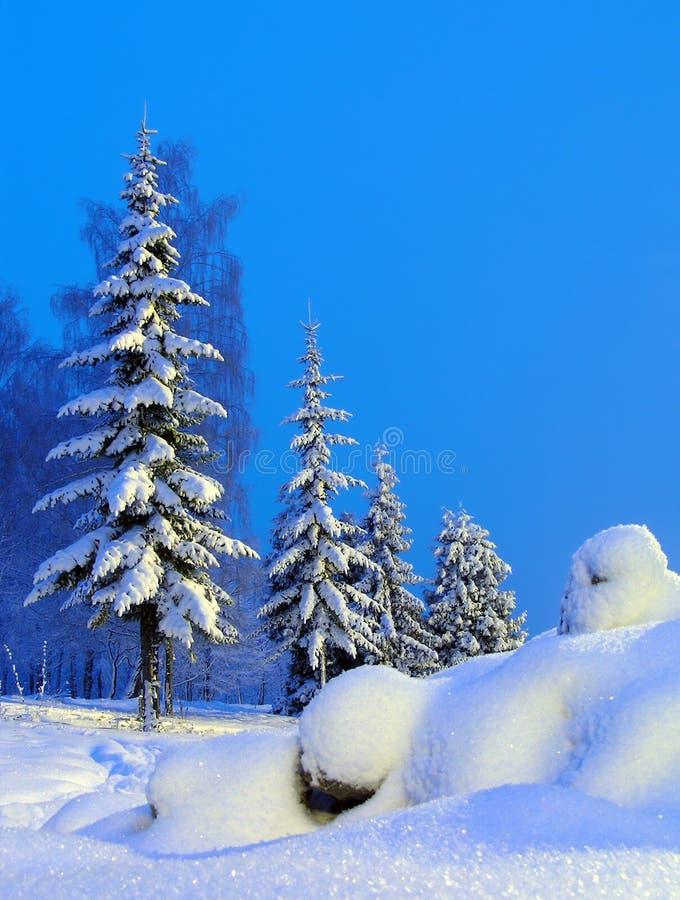 Download 雪人 库存图片. 图片 包括有 1月, 毛皮, 俄国, 雪人, 圣诞节, 冬天, 结构树, 本质 - 192441