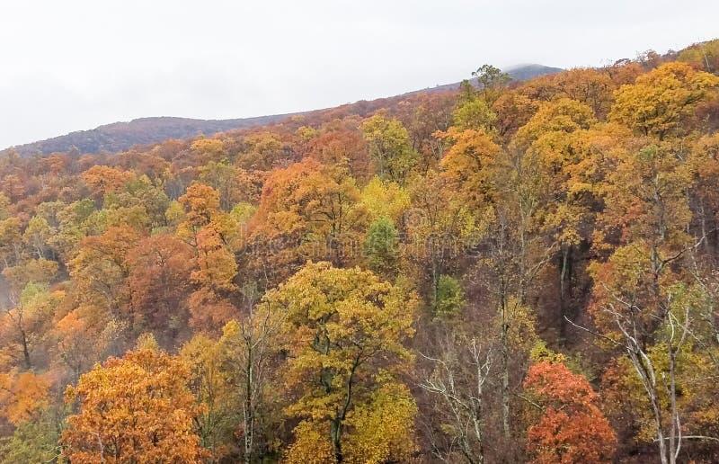雪伦多亚河谷山的鸟瞰图在秋天的 库存照片