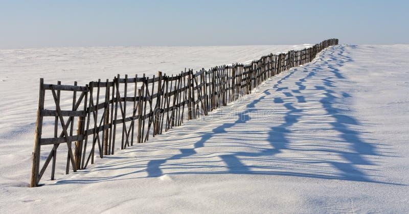 雪保留的篱芭 免版税库存照片