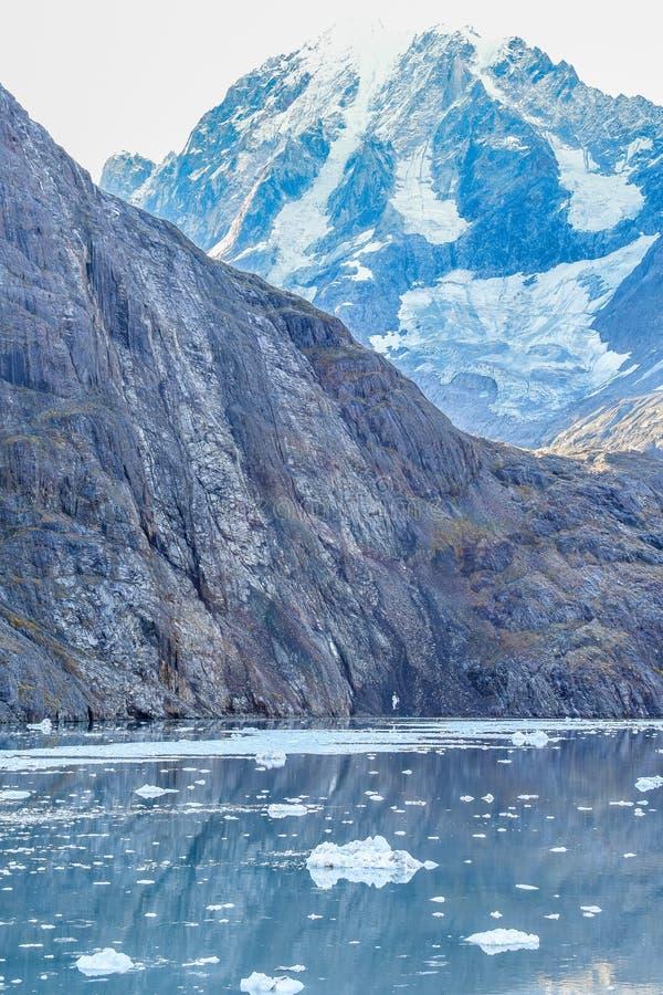 雪加盖了在冰河海湾,阿拉斯加的山 免版税库存图片
