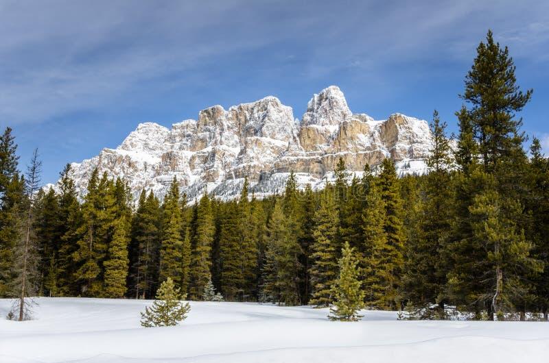 雪加盖的卡斯尔山和蓝天 库存图片