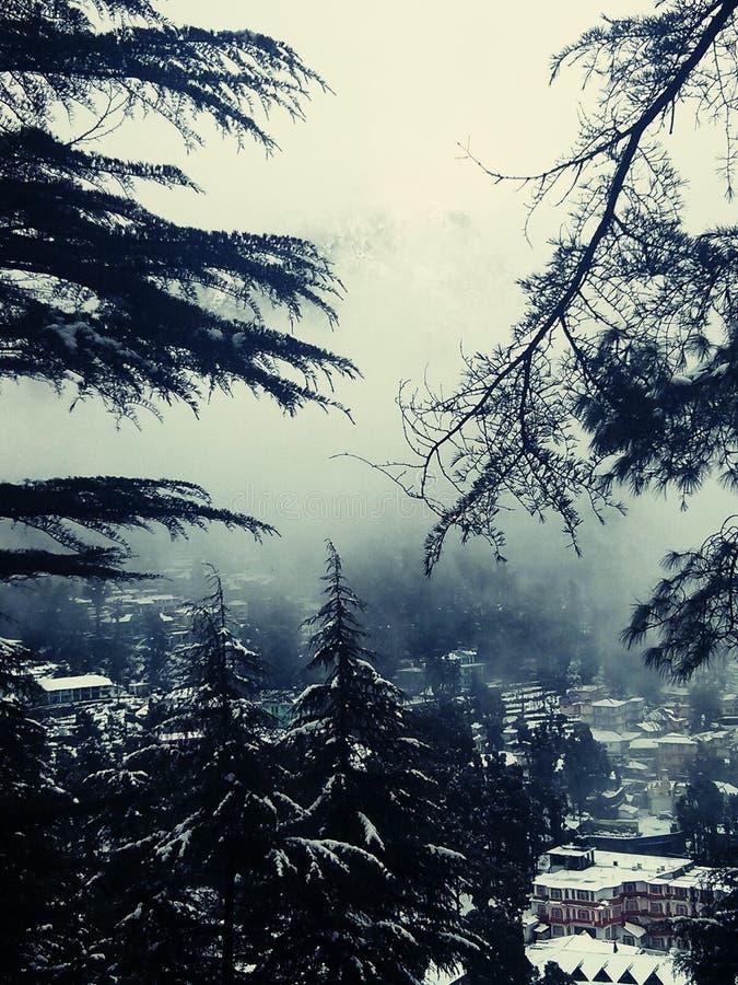 雪和薄雾在山在印度 免版税图库摄影