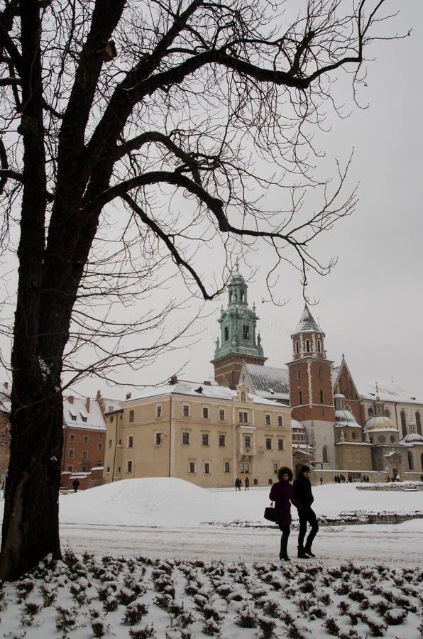 雪和Wavel城堡在克拉科夫 免版税图库摄影