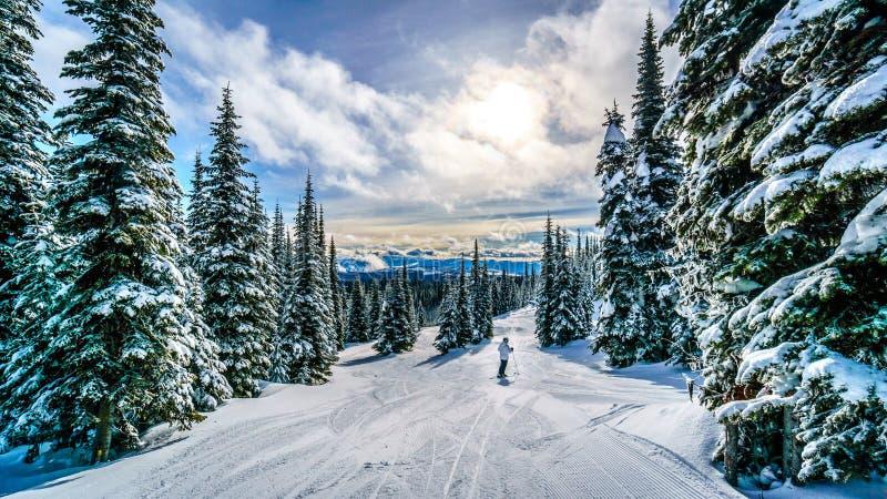 滑雪在一个冬天风景的日落下在高高山在太阳峰顶滑雪小山  免版税库存图片