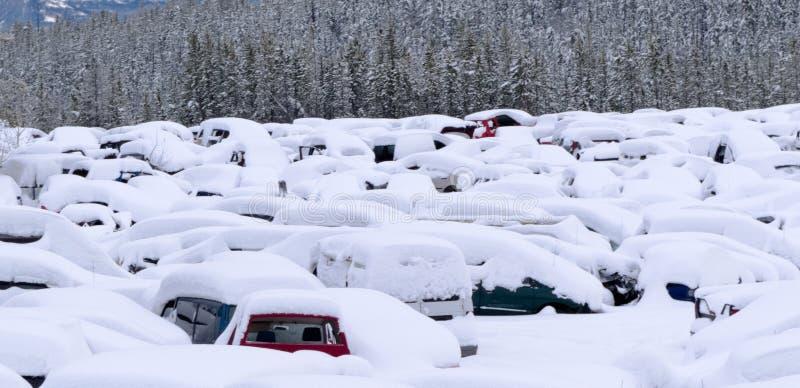 雪在停车场的飞雪以后埋没了汽车 库存图片