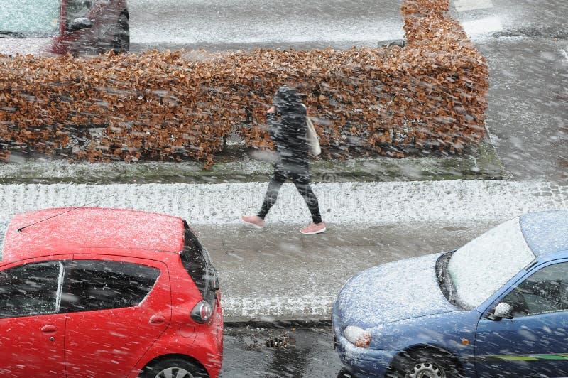 雪在哥本哈根 免版税库存照片
