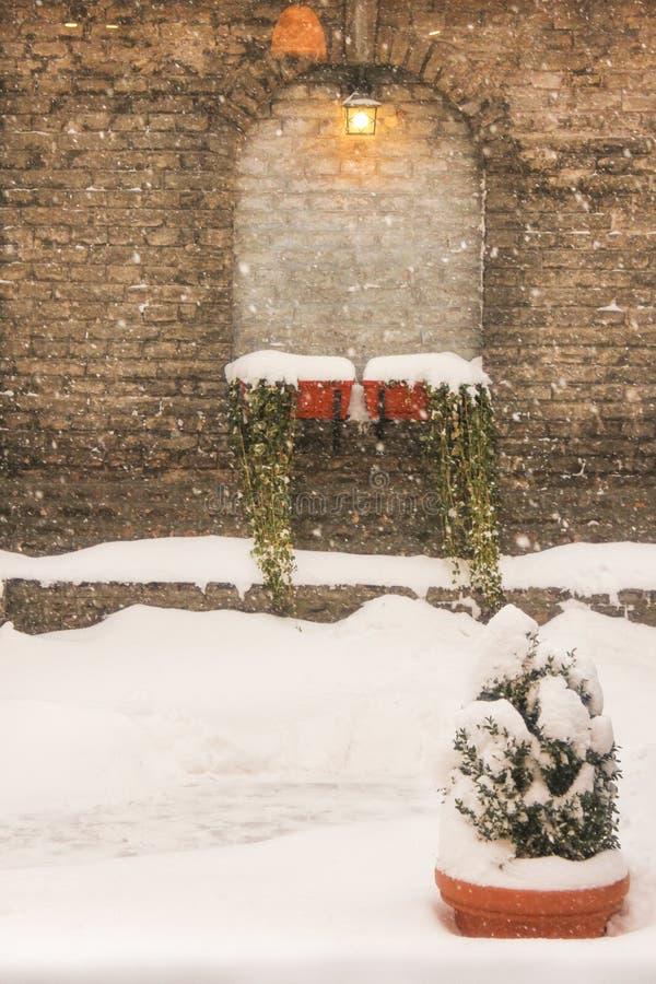雪在围场 免版税库存照片