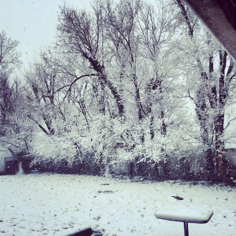 雪在奥扎克族印第安人 库存图片