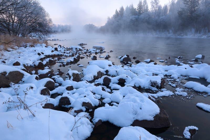 雪在河 免版税库存照片