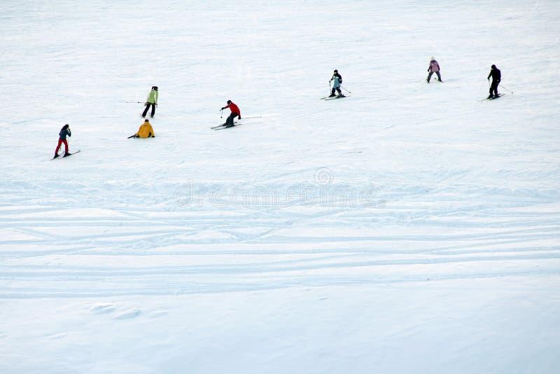 滑雪在雪的一群人 免版税库存照片