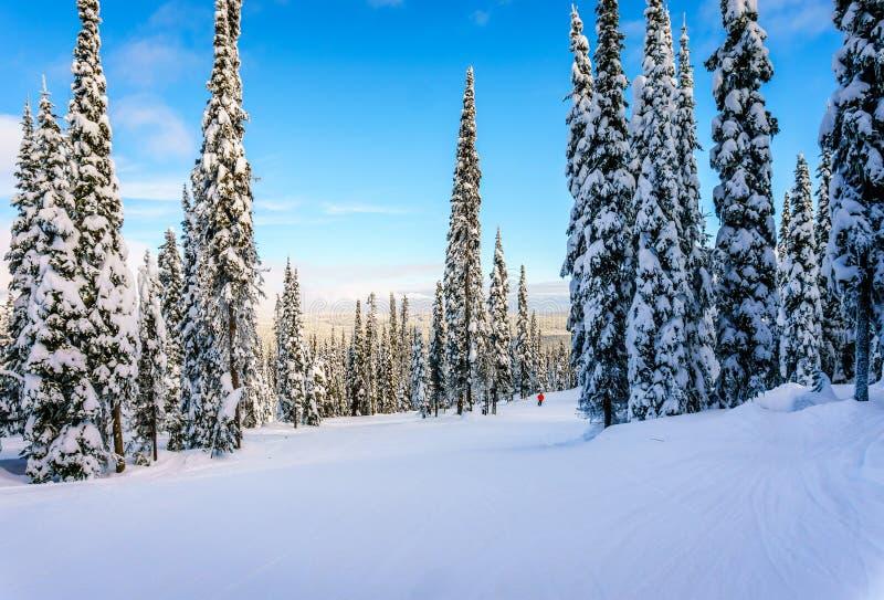 滑雪在高高山的一个冬天风景在包围太阳的高山村庄小山锐化 库存图片