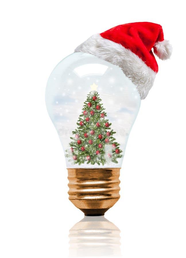 雪地球电灯泡与圣诞老人帽子的圣诞树 免版税库存照片