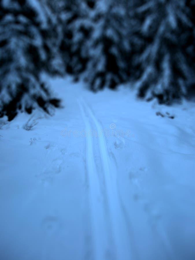 滑雪大头钉 免版税库存图片