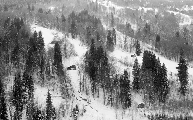 雪山森林看起来象中国墨水绘画风景 免版税库存照片