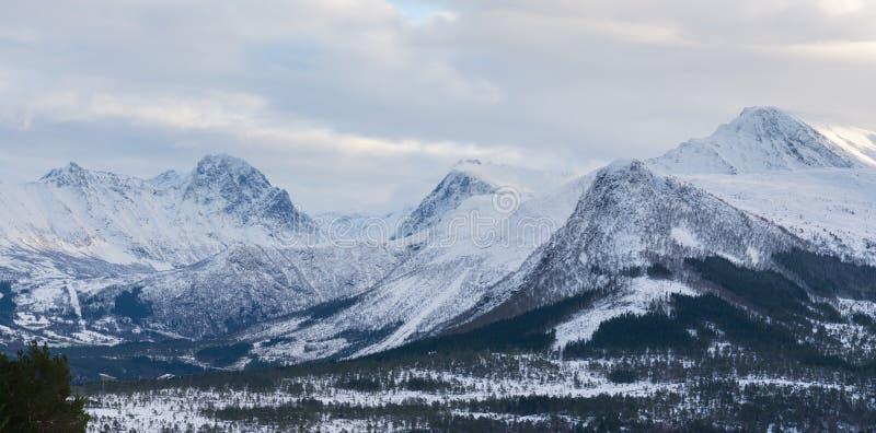雪山,挪威 免版税库存图片