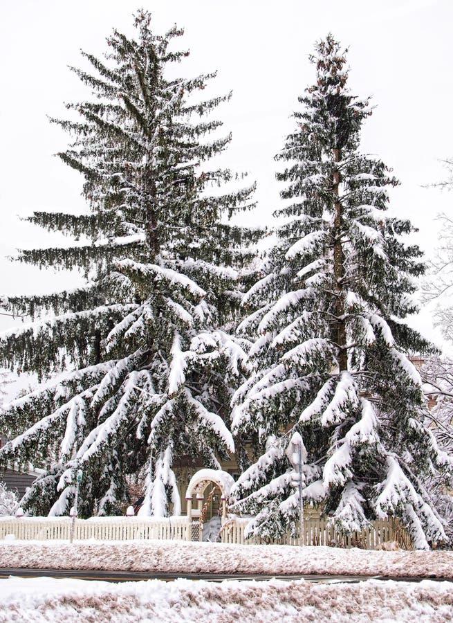雪掩藏的家 图库摄影