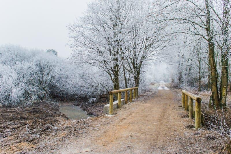 雪时间 免版税图库摄影
