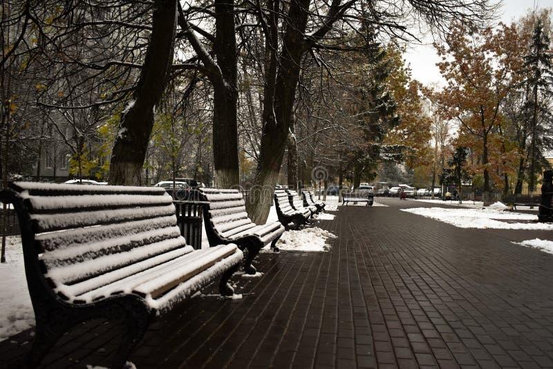 雪是非常蓬松的 库存照片