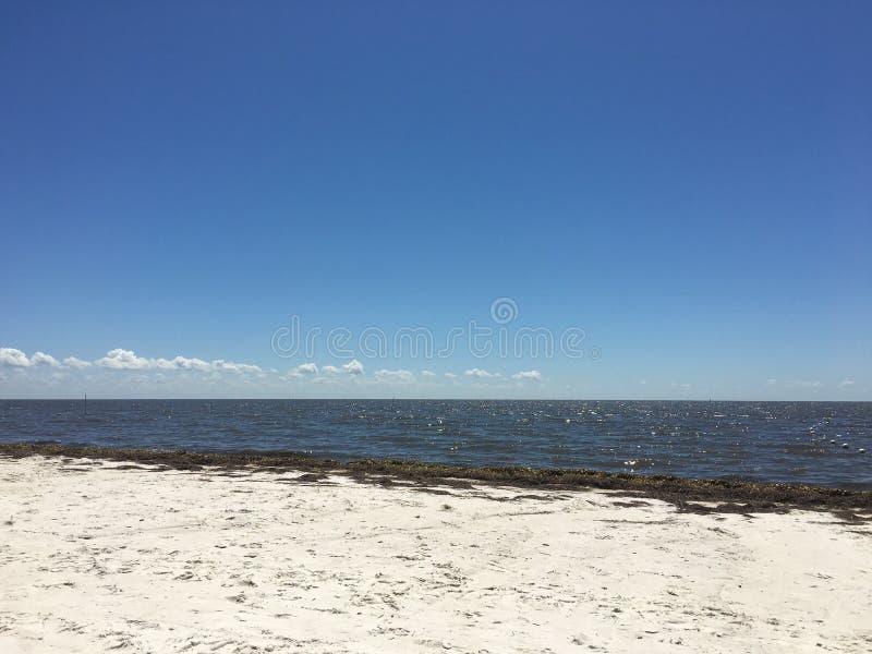 雪松关键海滩 库存照片