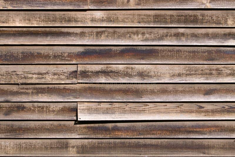 雪松房屋板壁 免版税库存照片