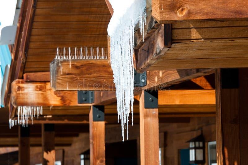垂悬雪松屋顶的Icycles 库存图片