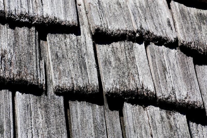 雪松震动木瓦纹理 库存照片