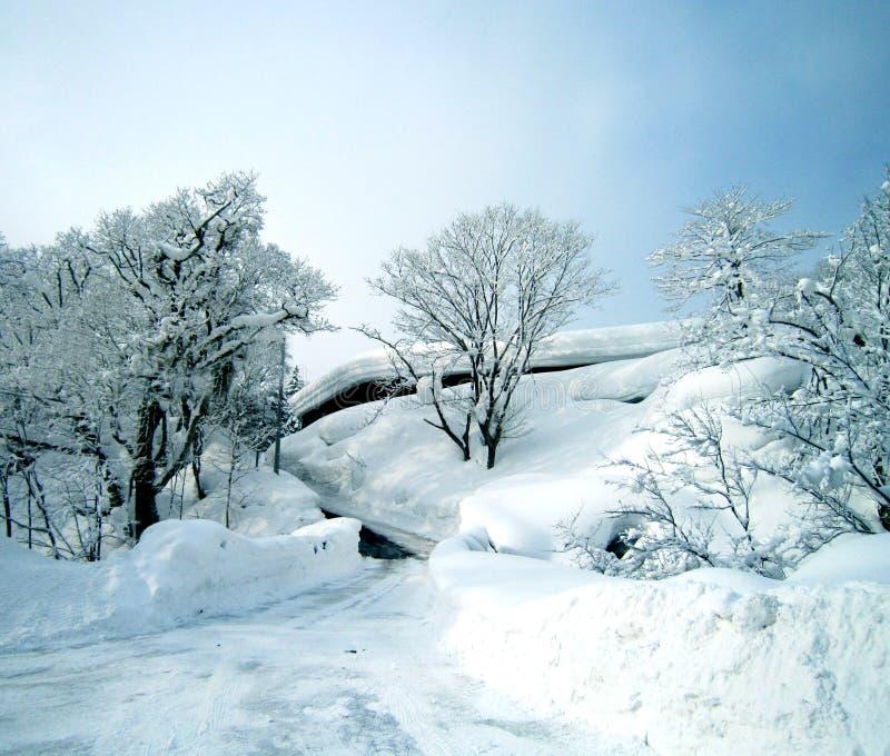 雪横向场面 免版税库存图片