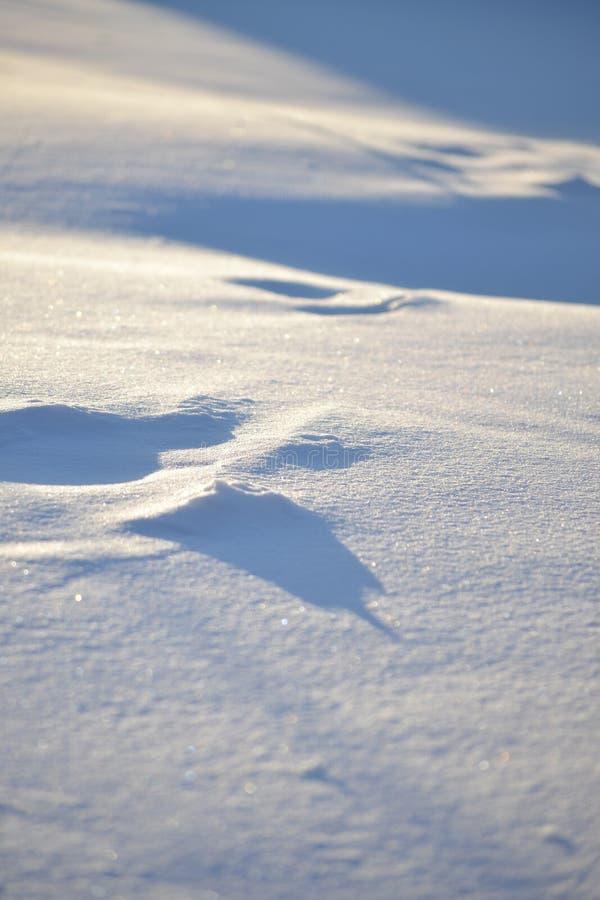 雪沙丘 免版税库存照片
