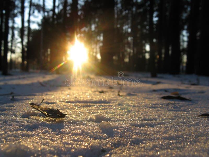 雪淡光象驱散金刚石 免版税库存照片