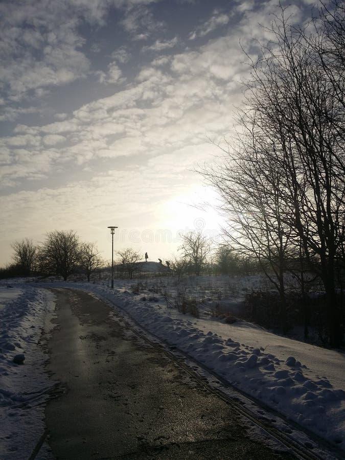 雪的人们 免版税库存图片