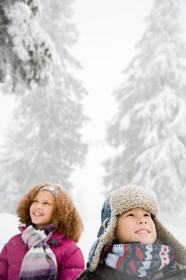 Download 雪的孩子 库存图片. 图片 包括有 白种人, 生态, 投反对票, 森林, axeman, 汉语, 环境, 发现 - 62534667