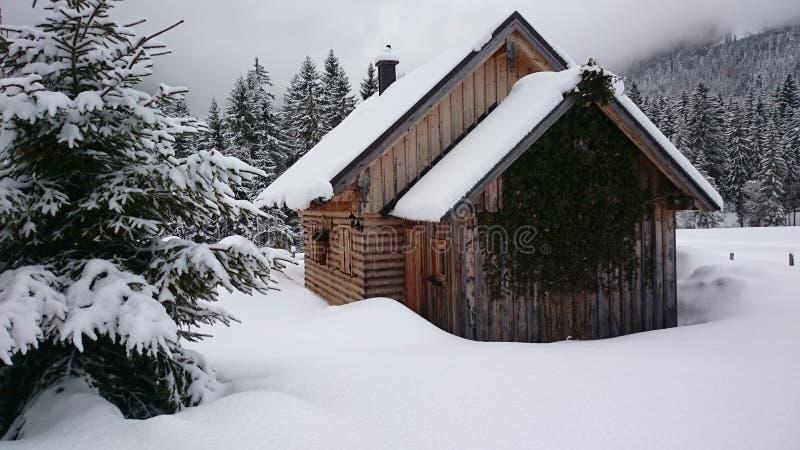 雪的木屋 库存图片