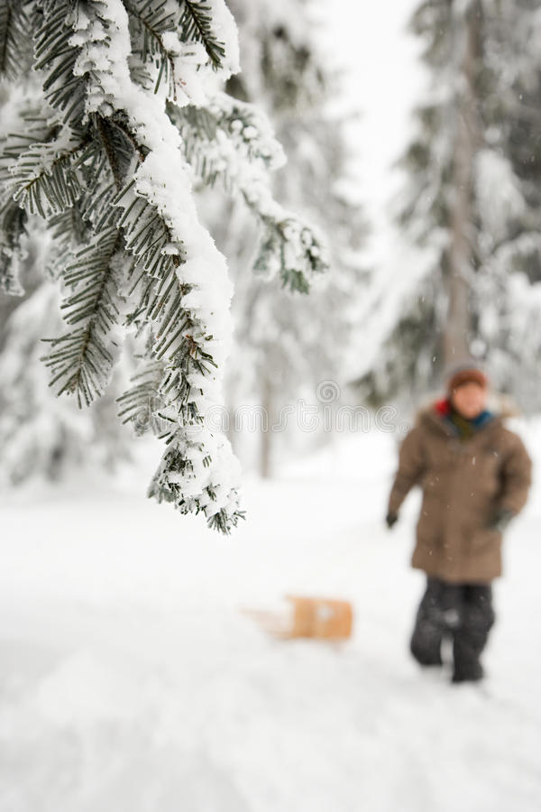 Download 雪的男孩 库存图片. 图片 包括有 滑稽, 帽子, 森林, 童年, 男朋友, 冻结, 寂寞, 阻力, 加拿大 - 62534797